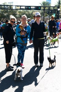 Walking the parade route were friends Regina Bell with Bacon, Brooke Miller with David and Sarah Espinoza with Faith.