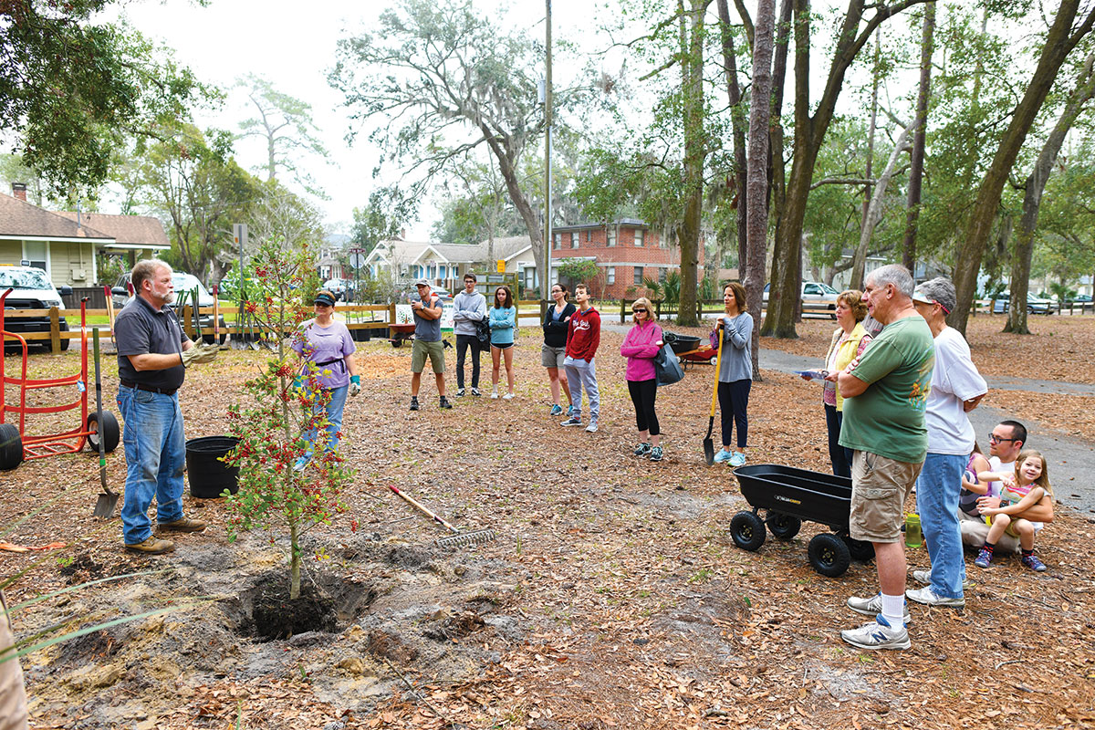 Boone-Park-Tree-Planting-2