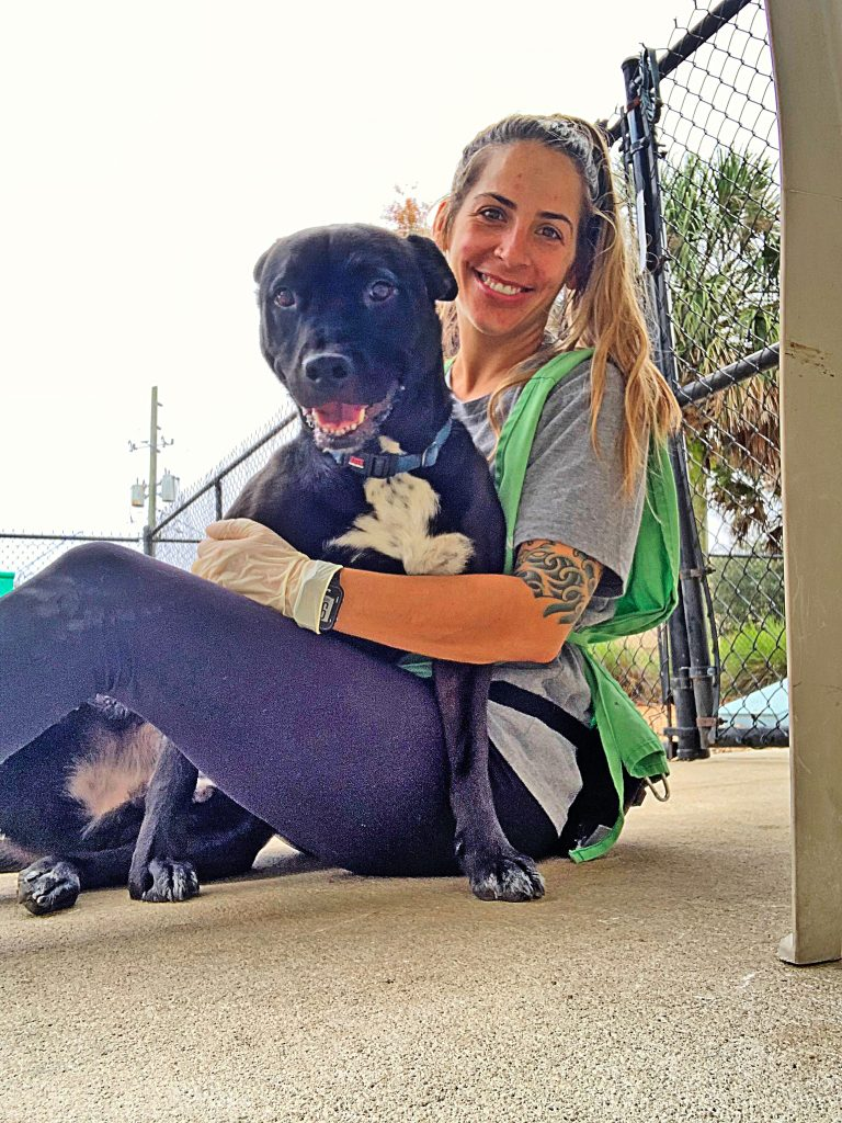 Chrissy Vanorsdale, a volunteer for ACPS & Friends of Jacksonville Animals (FOJA) is playing with an adoptable dog.